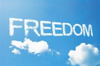 freedom picture